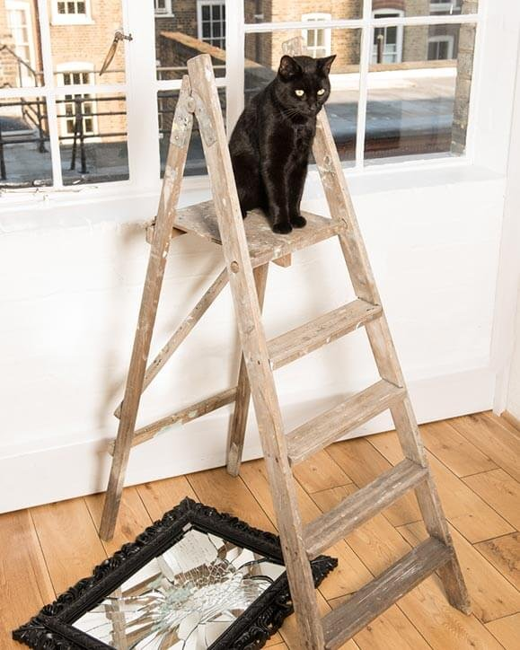 Black cat sat on top of a ladder and a broken mirror